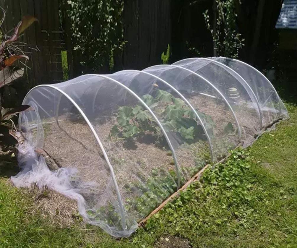 lưới nhựa ngăn côn trùng 20 mesh