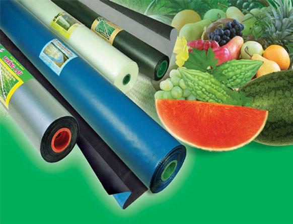 Cuộn màng PE phủ nông nghiệp giá rẻ